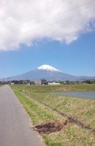 富士2016-2